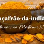 Açafrão-da-índia na Medicina Natural