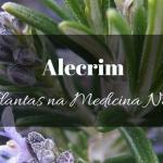Alecrim na Medicina Natural