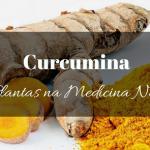 Curcumina na Medicina Natural