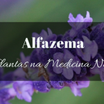 Alfazema na Medicina Natural