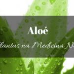 Aloé na medicina natural