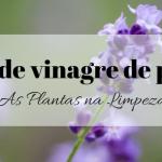 Spray multiusos de vinagre de plantas