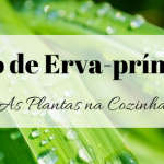 Óleo de Erva-príncipe