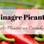 Vinagre Picante