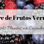 Vinagre de Frutos Vermelhos
