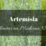 Artemísia na Medicina Natural