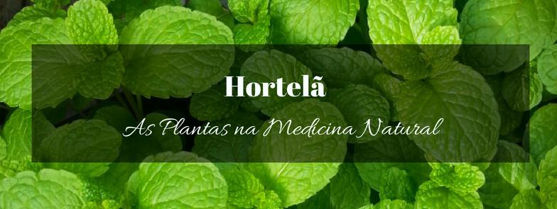 Hortelã na Medicina Natural