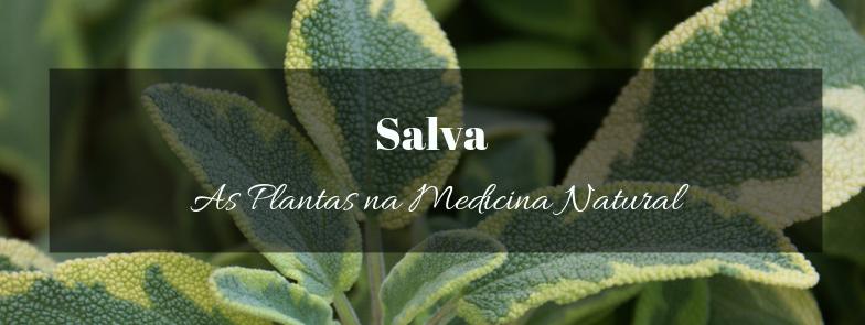 Salva na Medicina Natural