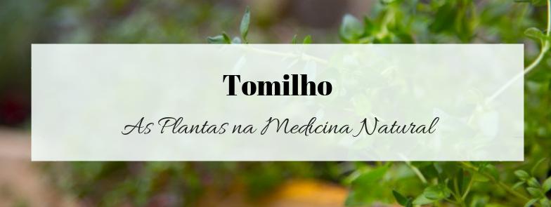 Tomilho – Antibacteriano e Antiespasmódico
